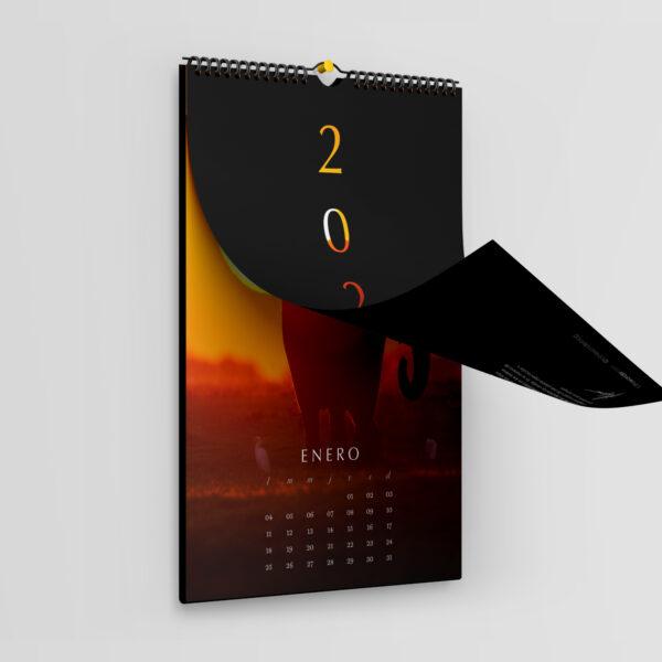 Calendario ToTheWonder 2021